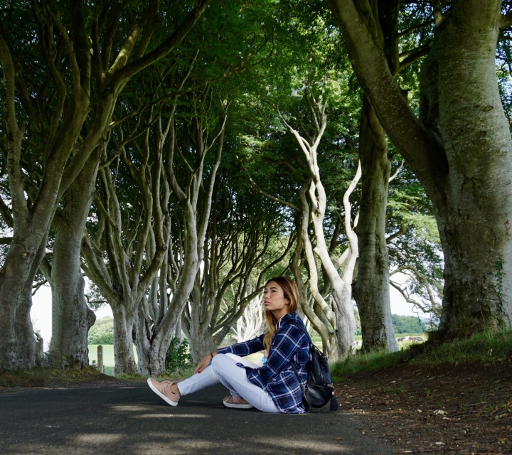 The Dark Hedges, Yes… a HollywoodFavorite